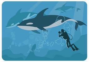 Whales Photographer Vector
