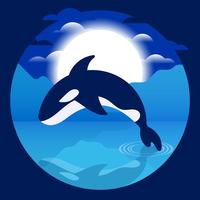 Killer Whales Illustration