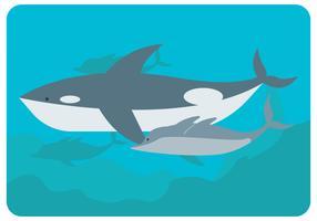 O vetor de baleia e golfinhos