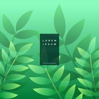 feuilles vertes design de fond eco