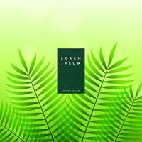 gröna löv ekologisk naturbakgrund