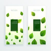 lindo cartão de banner vertical de folhas verdes