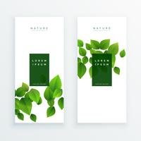 elegante bandeira branca com folhas verdes