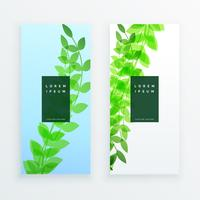 design de banner de folhas verticais verdes