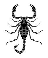 Schwarze Skorpion-Tätowierung