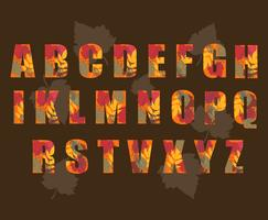 Autumn Alphabet Vector