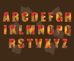 Autumn Alphabet Vector