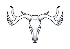 Deer Skull Line Vector