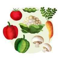 Vector de verduras de acuarela