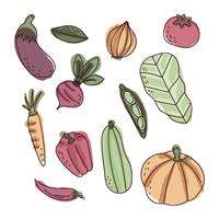 Colorful Watercolored Vegetables