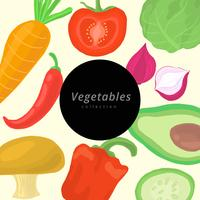 Watercolor Vegetables Vector Collection