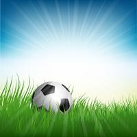 Football or soccer ball nestled in grass