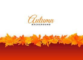 elegant autumn background leaves design