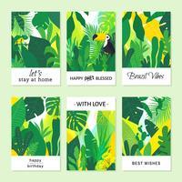 Cartões de nota brasileiros tropicais criativos do vetor