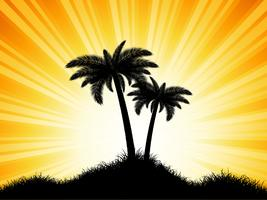 Palm tree silhouettes on sunny background