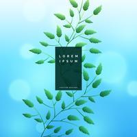 Fondo de hojas azules con efecto bokeh