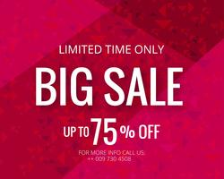Big sale template banner background vector
