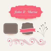 colección de elementos de decoración de boda rosa