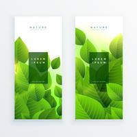 abstract green leaves vertical banners