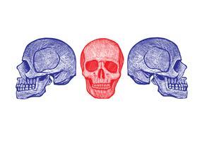 Skeleton Linolschnitt
