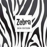 zebra print pattern in black and white