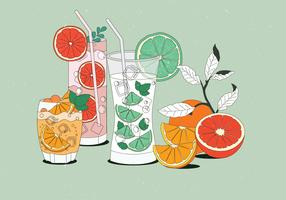 Vintage Citrus Beverages Illustrations Vector