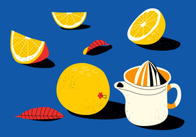 Vintage Flat Citrus Vector Illustrations