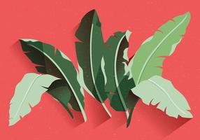 Banana-leaf-vector