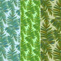 Vector Banana Leaves Set of Patterns