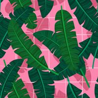 Banana Leaf On A Pink Background