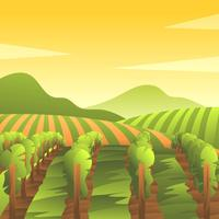 Vineyard Scenery First Person View Vector