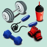 Realistic Gym tools  vector