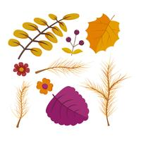 Beautiful Autumn Watercolor Floral Set Vectors