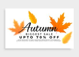 autumn sale banner with seasonal leaves