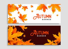 set of two autumn leaves seasonal banners design