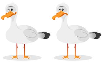 Funny Cute Seagull