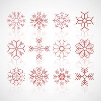 Various winter snowflakes set design vector