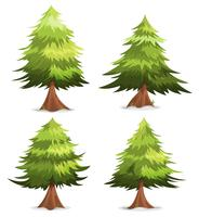 Pine Trees And Firs Set vector