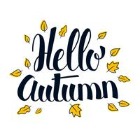 Hello Autumn, Calligraphy season banner design, illustration