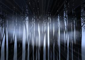 Silhouette of a forest at night