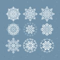 Vector Snowflakes collection