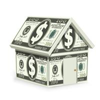 Dollar Home vector