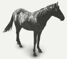 Illustration de cheval. Dessin au trait en forme de polygone.