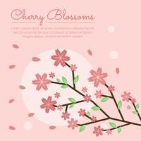 Flor de cerejeira sakura vector