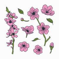 Doodled Botanical Cherry Blossom Flowers