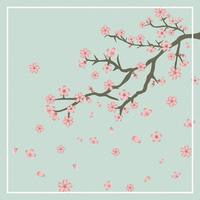 Flat Cherry Blossom Background Vector Illustration