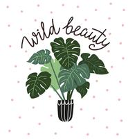 Hand drawn tropical house plants with lettering - ' wild beauty '. Card design.