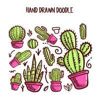 Vettore di cactus e succulente. Doodle illustration Set.