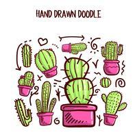 Vettore di cactus e succulente