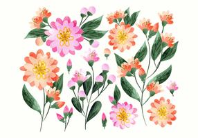 Vector Colorful Hand Drawn Floral Decorations